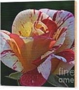 All American Magic Rose Wood Print