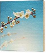 Almond Branch Wood Print