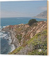 Along Big Sur Wood Print