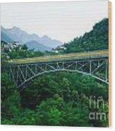 Alpine Village Wood Print
