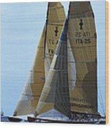 Americas Cup In San Diego Wood Print