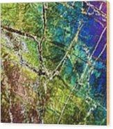 Amphibole Mineral, Light Micrograph Wood Print