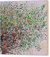 Apple Tree Wood Print