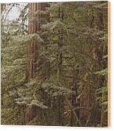 Ashland Oregon Wood Print