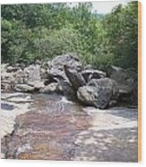 Au Natural Dam Wood Print