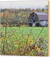 Autumn Along Tioga Road Wood Print