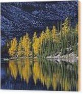 Autumn, Alpine Larch Trees, Lake Agnes Wood Print