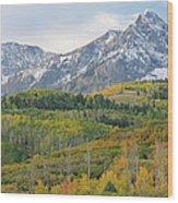 Autumn Dallas Divide Wood Print