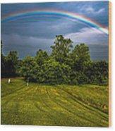 Backyard Rainbow Wood Print