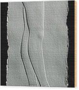 Ballet Wood Print by Suhas Tavkar