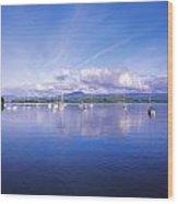 Bantry Bay, Whiddy Island, Co Cork Wood Print