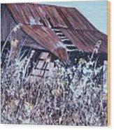 Barn in Sunlight Wood Print