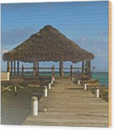 Beach Deck With Palapa Floating In The Water Wood Print
