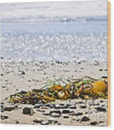 Beach Detail On Pacific Ocean Coast Wood Print by Elena Elisseeva