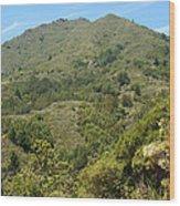 Beautiful Mount Tamalpais Wood Print