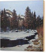 Beaver Creek Wood Print by W  Scott Fenton