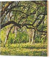 Bent Trees Wood Print