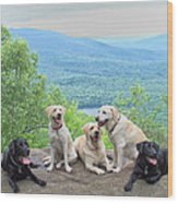 Best Of Friends Wood Print