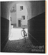 Bicycle In Tunnel Wood Print by Gordon Wood