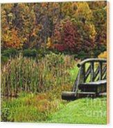 Big Ditch Lake Wood Print