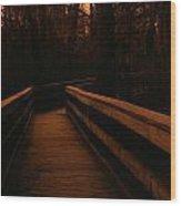 Black Bayou 2 Wood Print