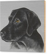 Black Labrador Wood Print by Patricia Ivy