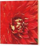 Blazing Red Wood Print
