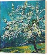 Blooming Appletree Wood Print