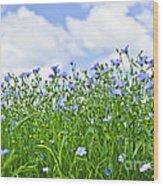 Blooming Flax Field Wood Print by Elena Elisseeva