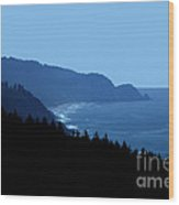 Blue Ocean Vista Wood Print