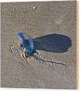 Blue On The Beach Wood Print