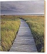 Boardwalk Along The Salt Marsh Wood Print