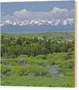 Bridger Mountain View Wood Print
