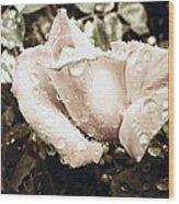 Bring May Flowers Wood Print
