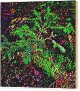Brook Texture 88 Wood Print