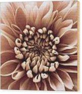 Brown Flower Wood Print