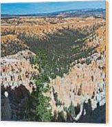 Bryce Point 09 Wood Print