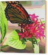Butterfly Flowers Wood Print