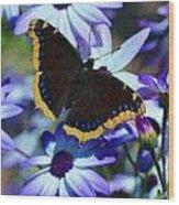 Butterfly In Blue Wood Print