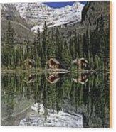Cabins, Sargents Point, Lake Ohara Wood Print