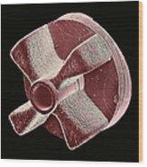 Cam Wheel, Sem Wood Print