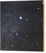 Canis Major Constellation Wood Print