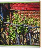 Cape Cod Bike Wood Print