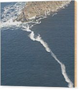 Cape Point, The Dividing Point Wood Print