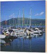 Carlingford Yacht Marina, Co Louth Wood Print