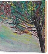 Change Of Falls' Sparkle Wood Print