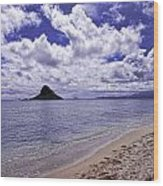 Chinaman S Hat From Kualoa Wood Print