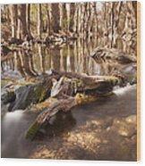 Cibolo Creek Wood Print by Paul Huchton