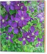 Clematis In Bloom Wood Print