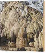 Cleopatra Terrace, Mammoth Hot Springs Wood Print